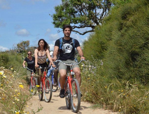 Bike Beach & Oysters