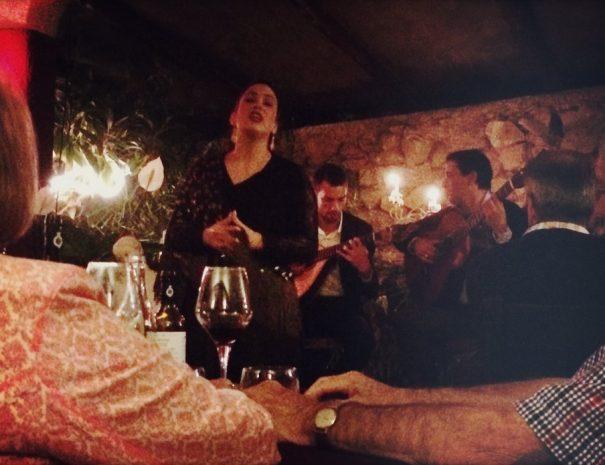 Wine & Fado Tour